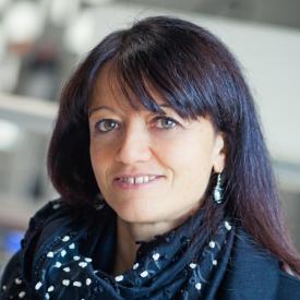 Federica Cattonaro's picture